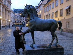 A bronze horse in Stockholm
